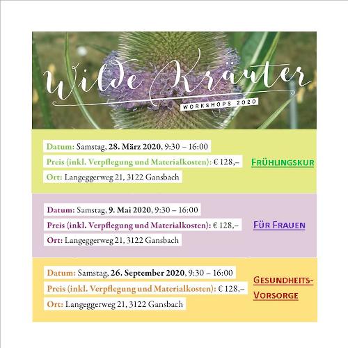 Wilde Kräuter Workshops